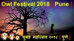 Owl Festival India