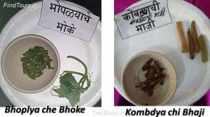Bhoplya che Bhoke and Kombdya chi Bhaji - wild vegetables in india