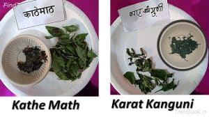 Kathe Math and Karat Kanguni - wild vegetables in india