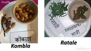 Kombla and Ratale - wild vegetables in india